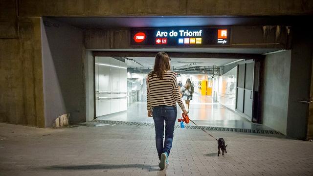 primer-perro-en-entrar-al-metro-de-barcelona