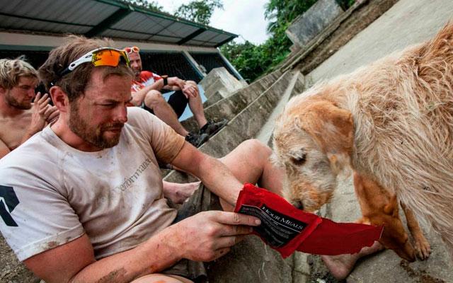 hombre-ayuda-perro-callejero-maraton-ecuador