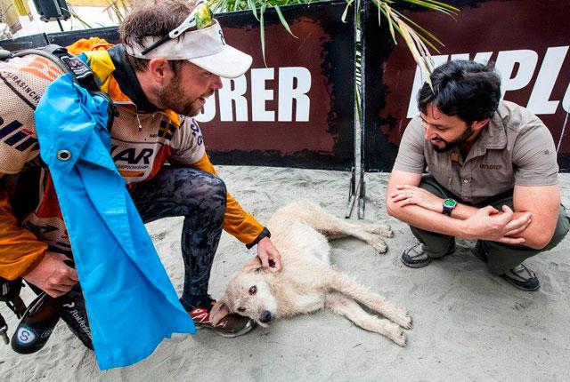 perro-selva-ecuador