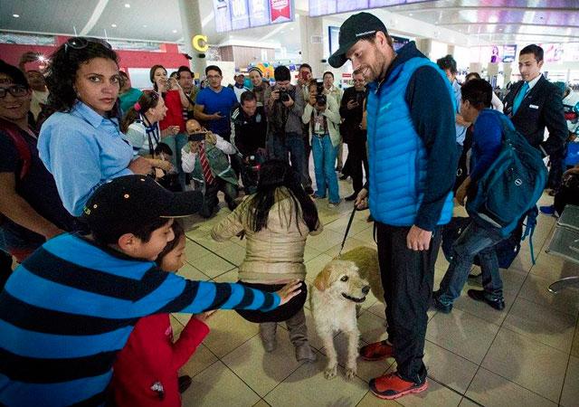 perro-vagabundo-competicion-ecuador