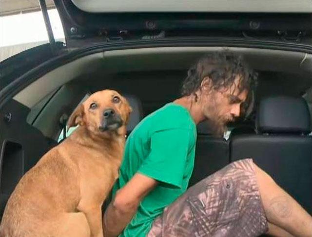 perro-sigue-amo-detenido-sube-coche-policia-brasil