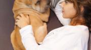 Confirman que los perros entienden qué les decimos y cómo lo hacemos