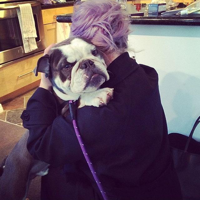 willy-perro-Kelly-Osbourne